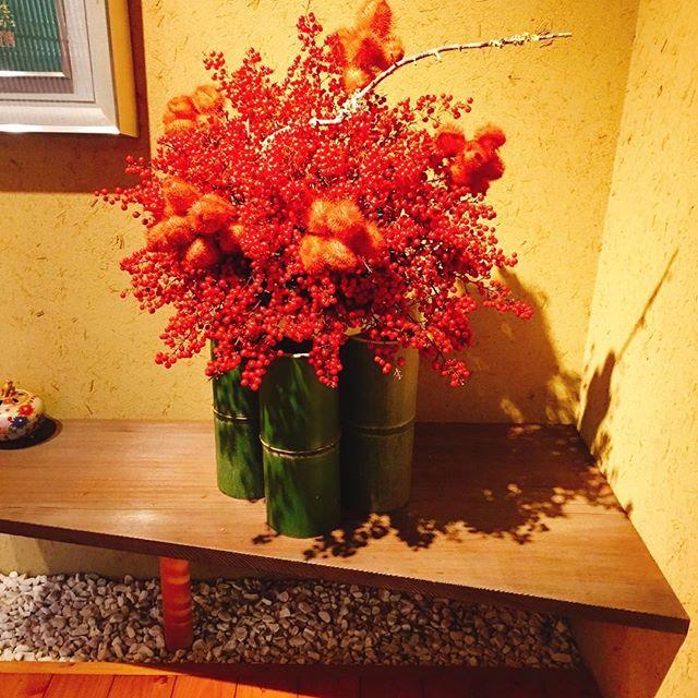 新年の、斬新な花